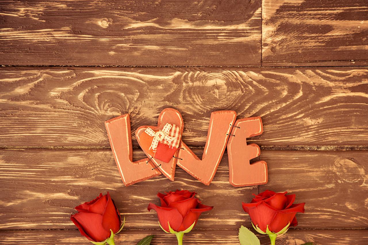 Фотографии День всех влюблённых Английский сердечко Розы Любовь красная Цветы Трое 3 Доски День святого Валентина английская инглийские серце Сердце сердца роза Красный красные красных цветок три втроем