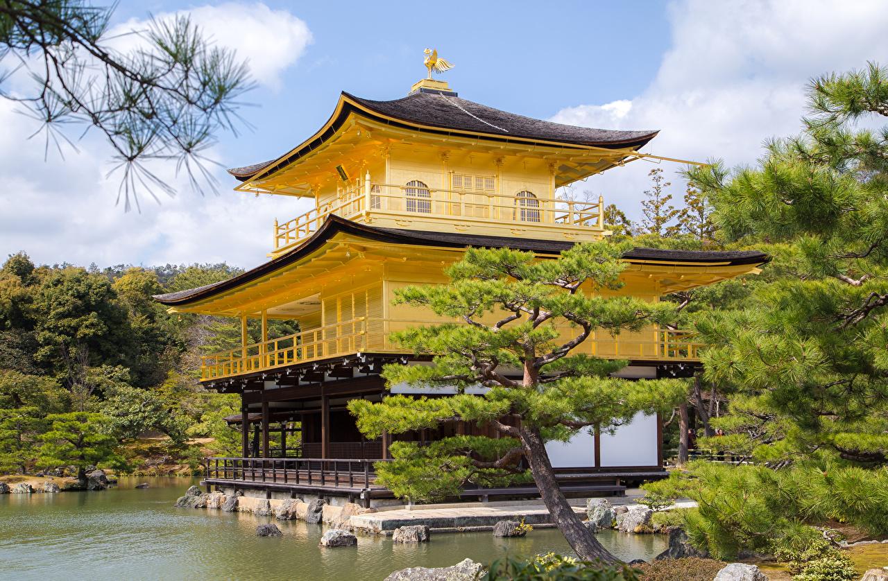 Обои для рабочего стола Киото Япония Kinkaku-ji Temple Ель храм Города ели Храмы город