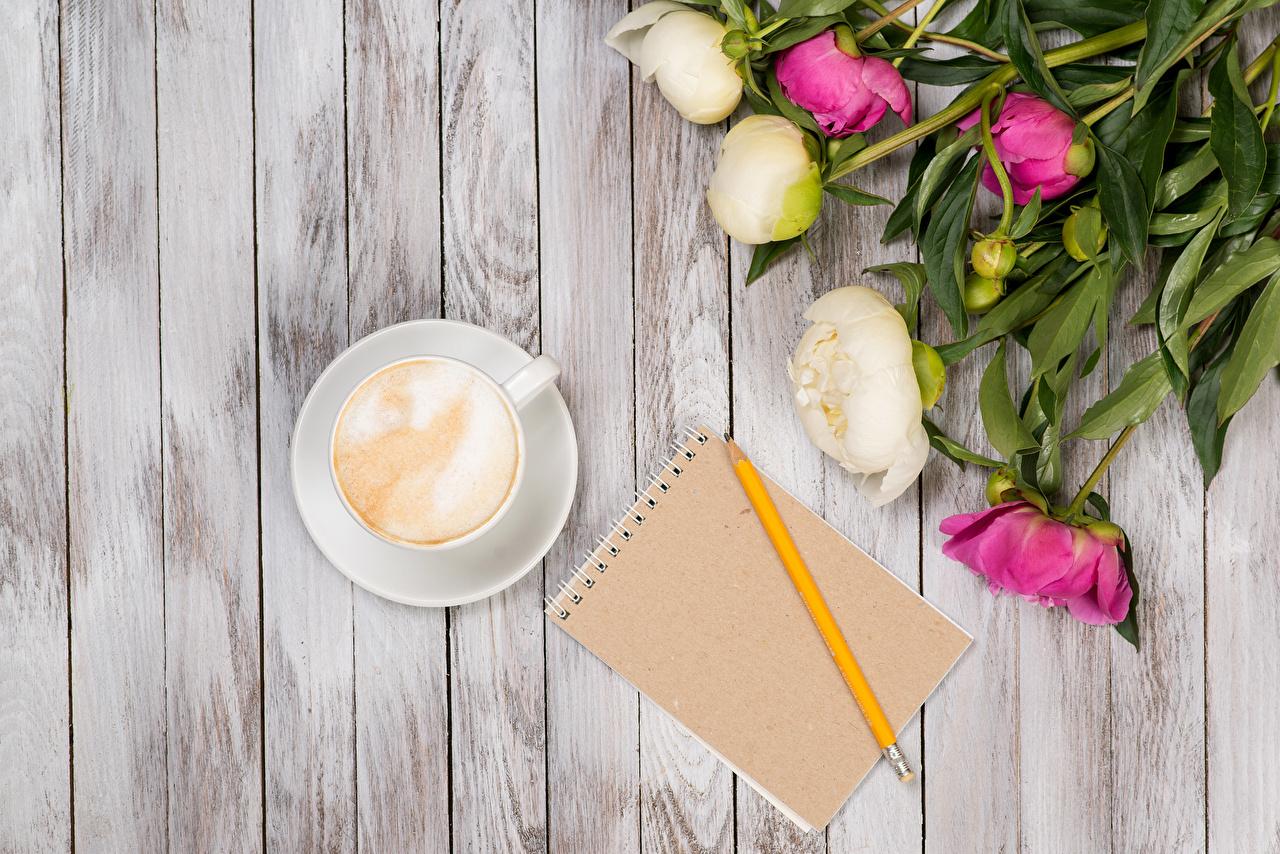 Фотография карандаша Блокнот Капучино пион цветок Чашка Доски карандаш Карандаши карандашей Пионы Цветы чашке