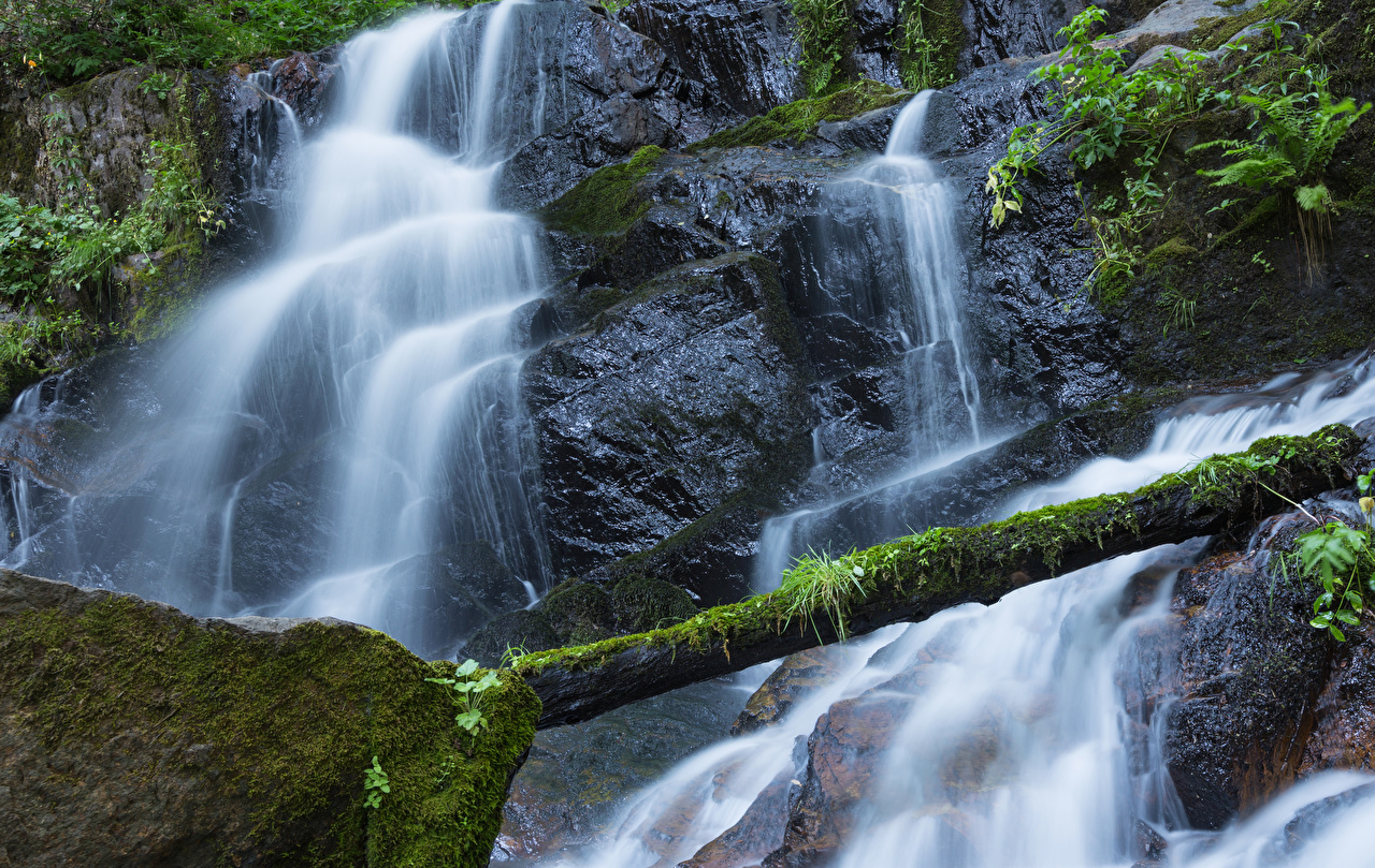 Картинка Калифорния США Sequoia National Park Скала Бревна Природа Водопады Парки Мох штаты Утес