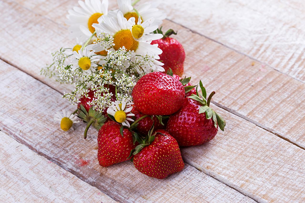 Обои для рабочего стола Цветы Ромашки Клубника Еда цветок ромашка Пища Продукты питания