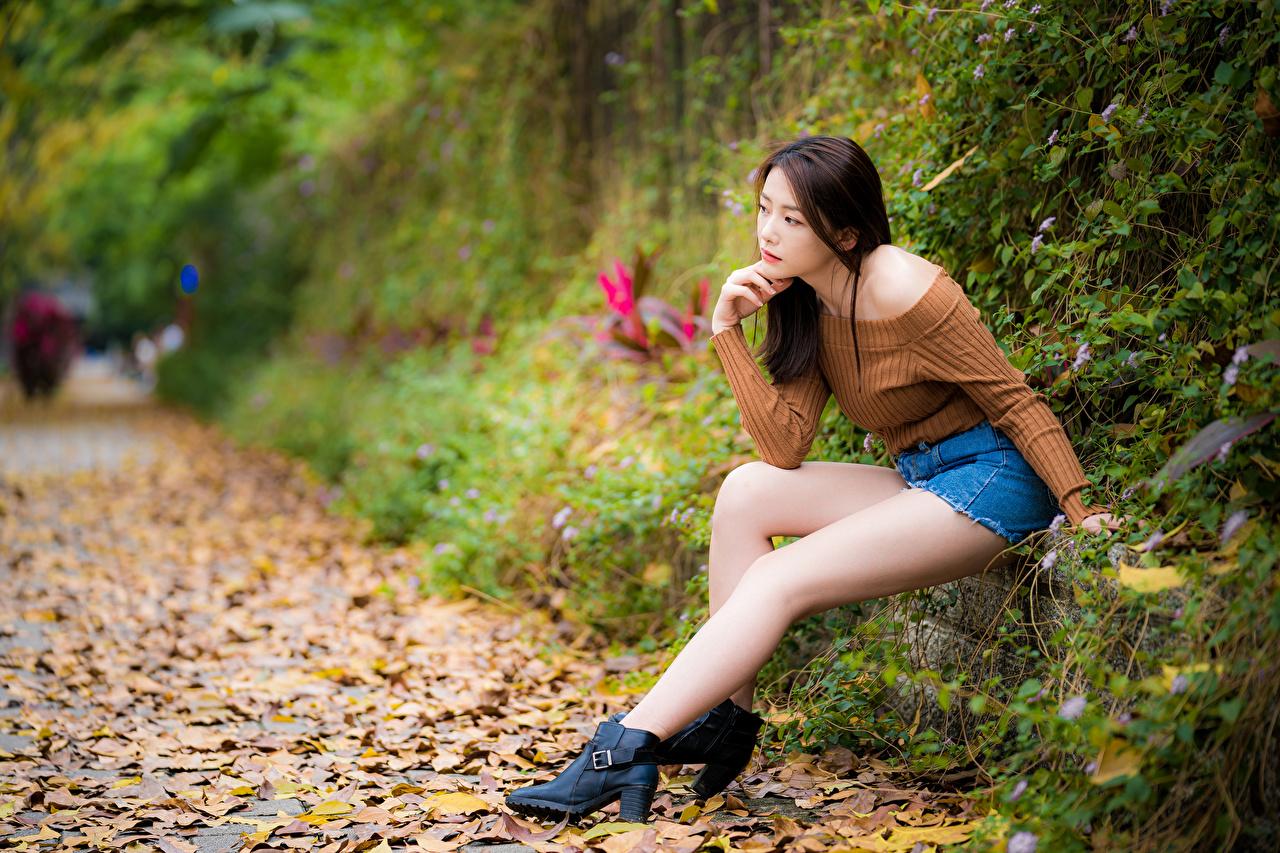 Фотографии Листья боке молодая женщина ног азиатка Сидит лист Листва Размытый фон девушка Девушки молодые женщины Ноги Азиаты азиатки сидя сидящие