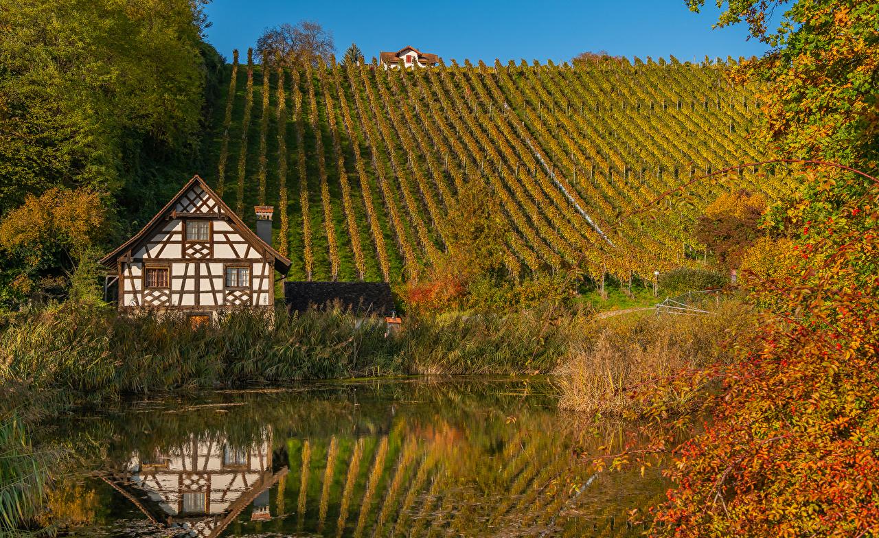 Фото Швейцария Thurgau Осень Природа Пруд Холмы Здания кустов осенние холм холмов Дома Кусты