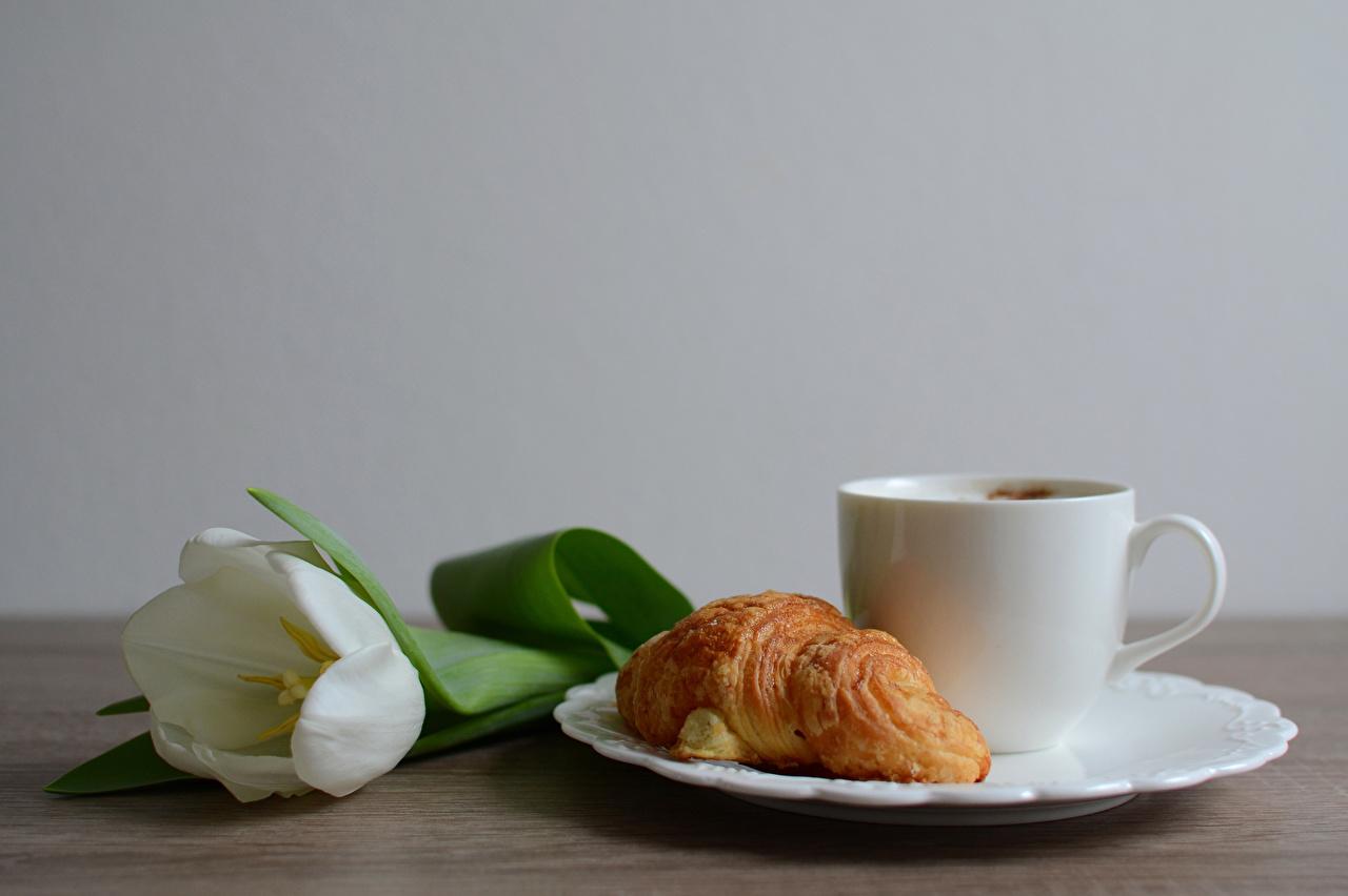Фотографии Тюльпаны Круассан Еда чашке тарелке тюльпан Пища Чашка Тарелка Продукты питания