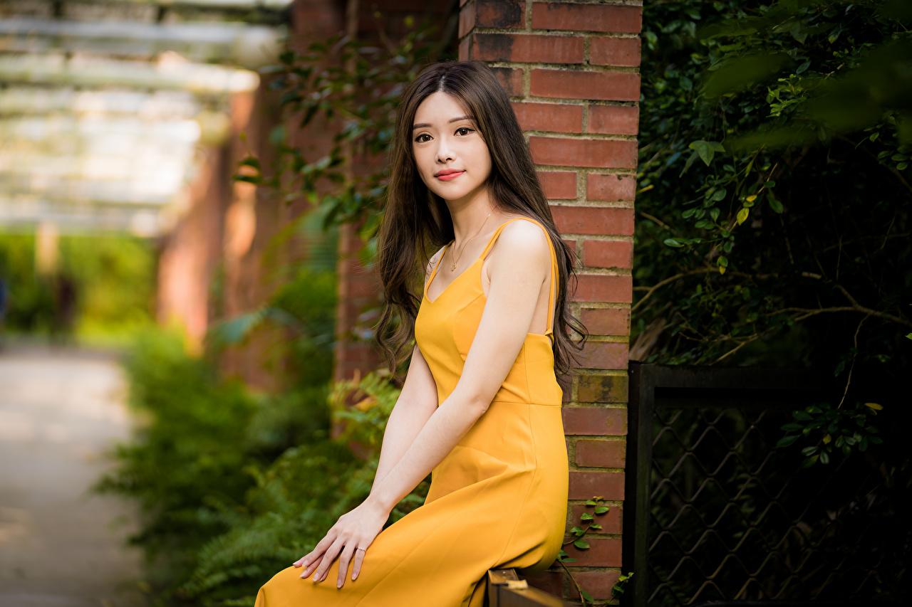 Картинки Размытый фон молодые женщины Азиаты сидящие Взгляд Платье боке девушка Девушки молодая женщина азиатки азиатка сидя Сидит смотрит смотрят платья