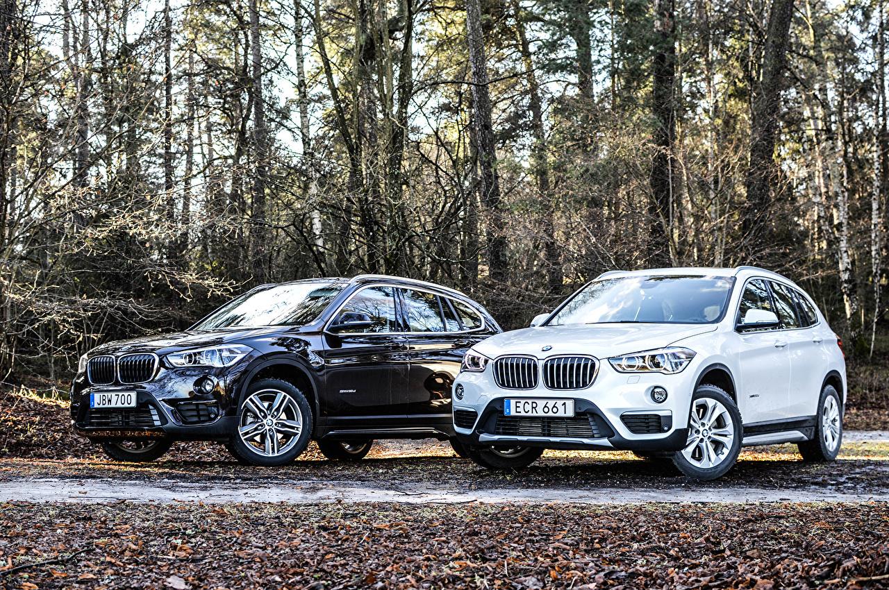 Картинки БМВ 2015-16 X1 (F48-49) Двое машина Металлик BMW 2 два две вдвоем авто машины Автомобили автомобиль
