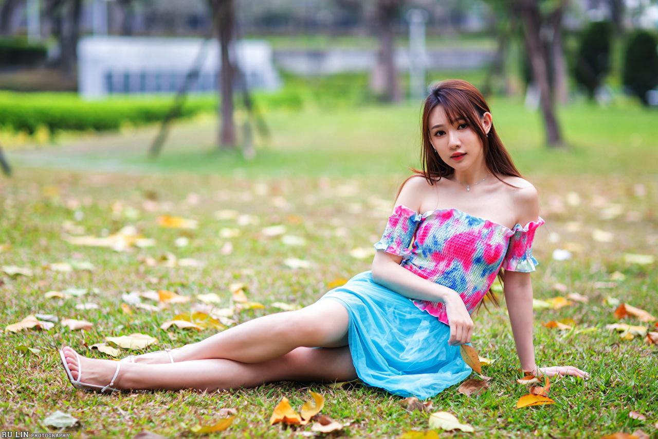 Фотографии шатенки боке Девушки азиатки Сидит траве смотрят Шатенка Размытый фон девушка молодая женщина молодые женщины Азиаты азиатка сидя Трава сидящие Взгляд смотрит