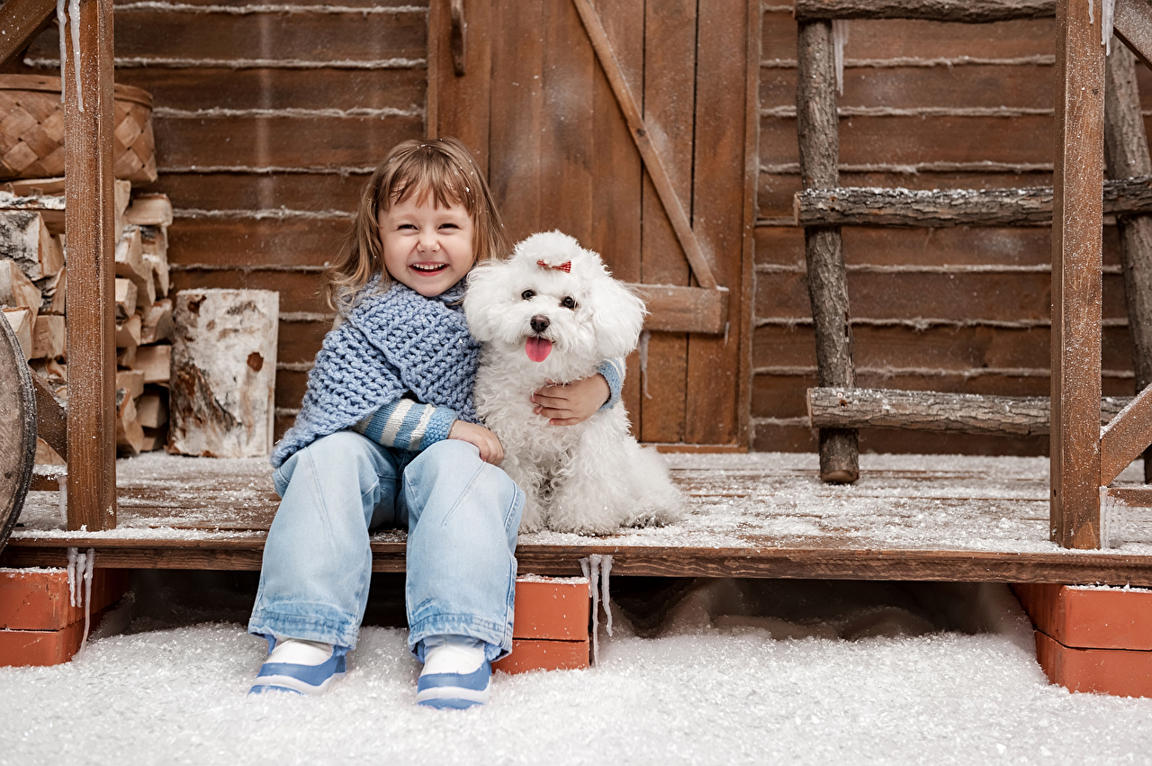 Фотографии девочка Болоньез собака Улыбка смеются Дети Зима Сидит Девочки Собаки Смех смеется улыбается ребёнок зимние сидя сидящие