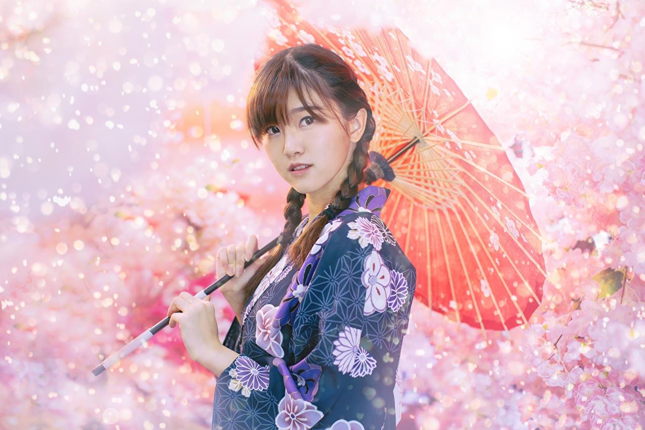 Обои для рабочего стола шатенки косички боке Девушки Азиаты зонтом смотрят Шатенка Коса косы Размытый фон девушка молодая женщина молодые женщины азиатки азиатка Зонт зонтик Взгляд смотрит