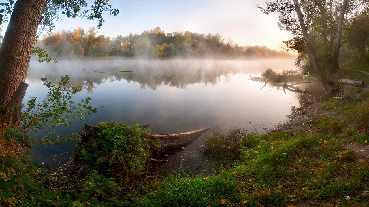Картинка Туман Природа речка Трава Побережье Деревья тумана тумане Реки река траве берег дерево дерева деревьев