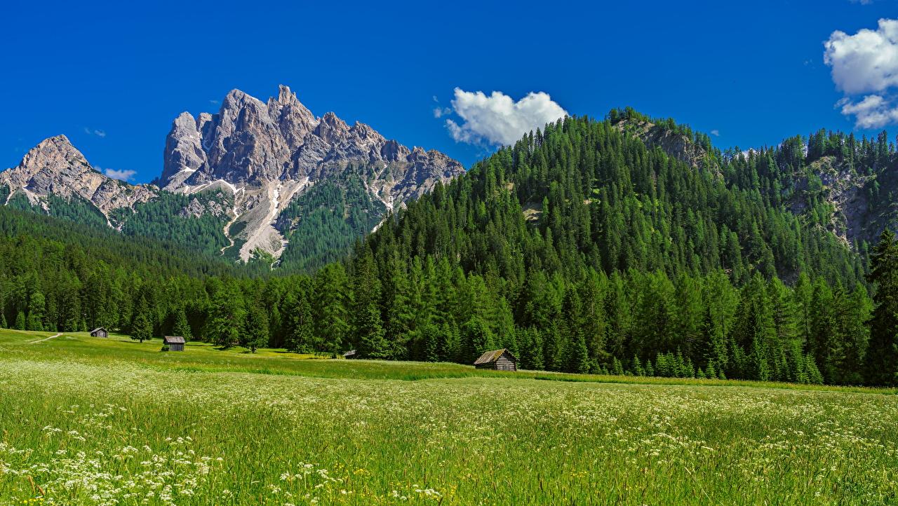 Фотография альп Италия Trentino-Alto Adige гора Природа Луга дерева Альпы Горы дерево Деревья деревьев