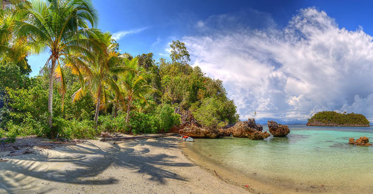Картинка Индонезия Lelintah West Papua Пляж Природа Пальмы Тропики Побережье Кусты Облака берег