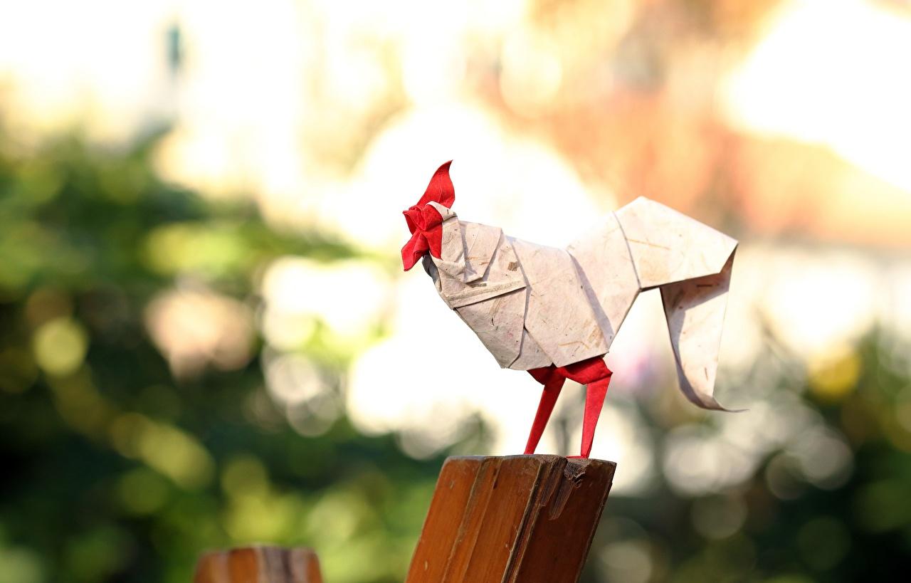 Обои для рабочего стола Петух Оригами бумаге Размытый фон Бумага бумаги боке