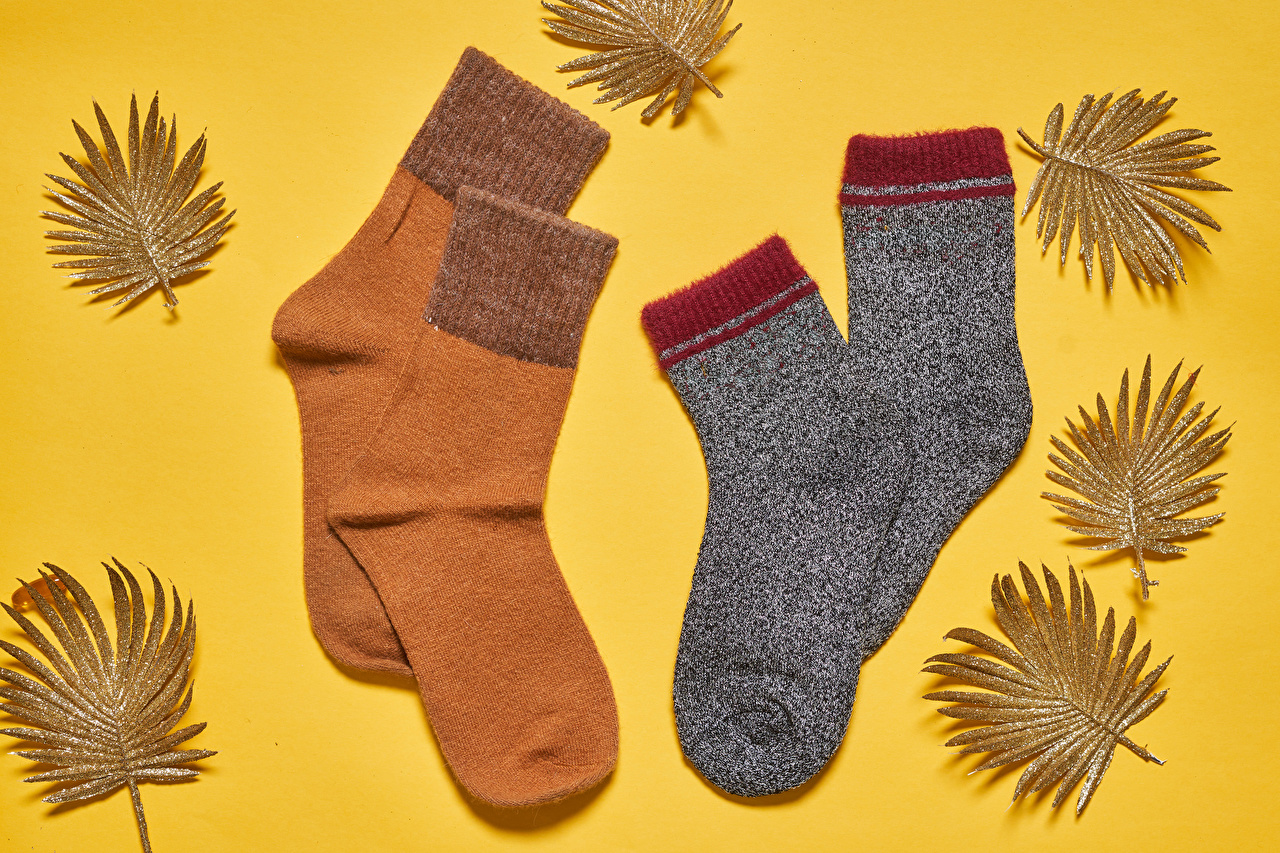 Фото лист носках осенние Цветной фон Листва Листья Носки Осень