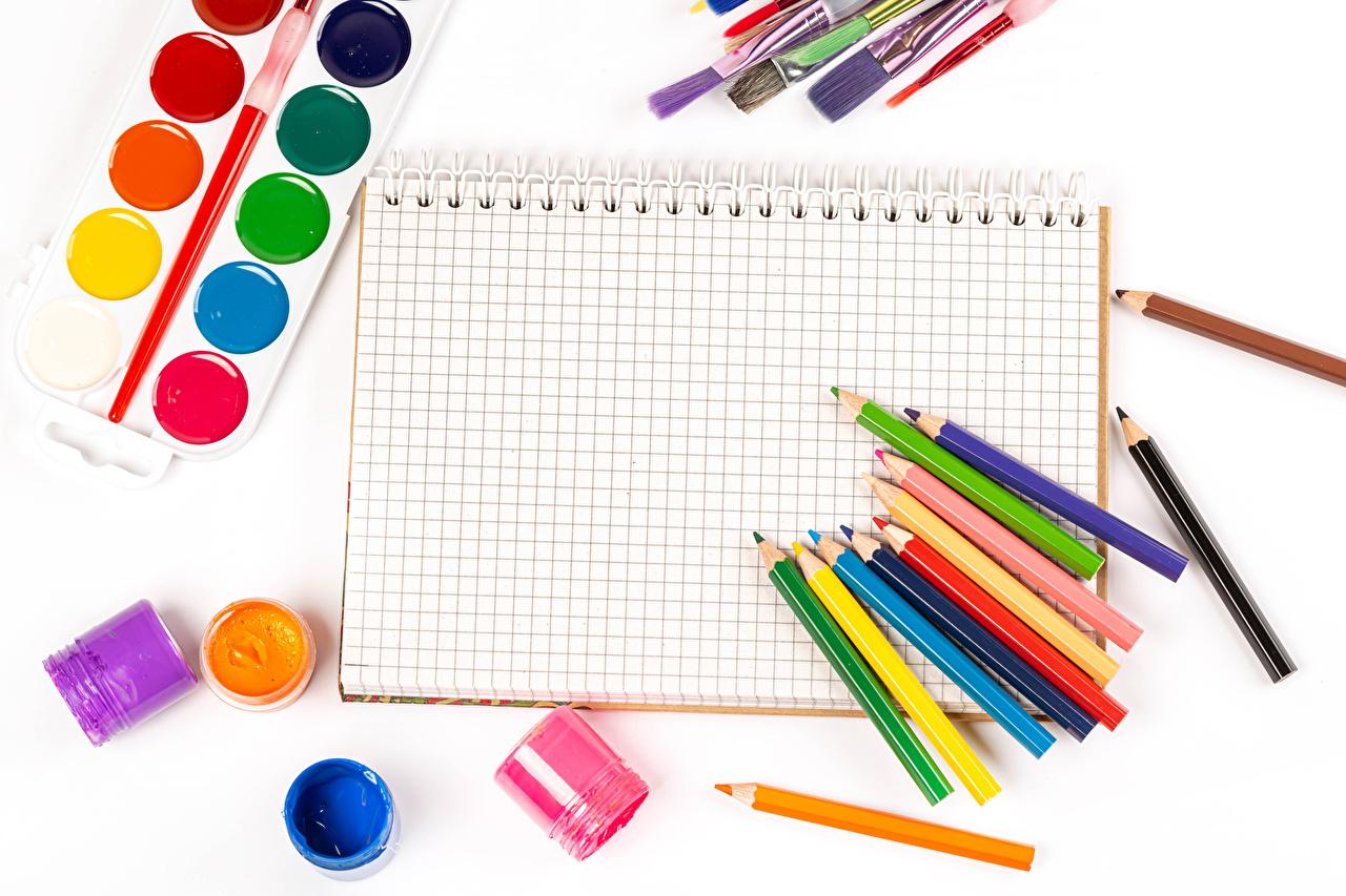 Картинка Школа карандаша Лист бумаги Краски Разноцветные Тетрадь Белый фон школьные карандаш Карандаши карандашей белом фоне белым фоном