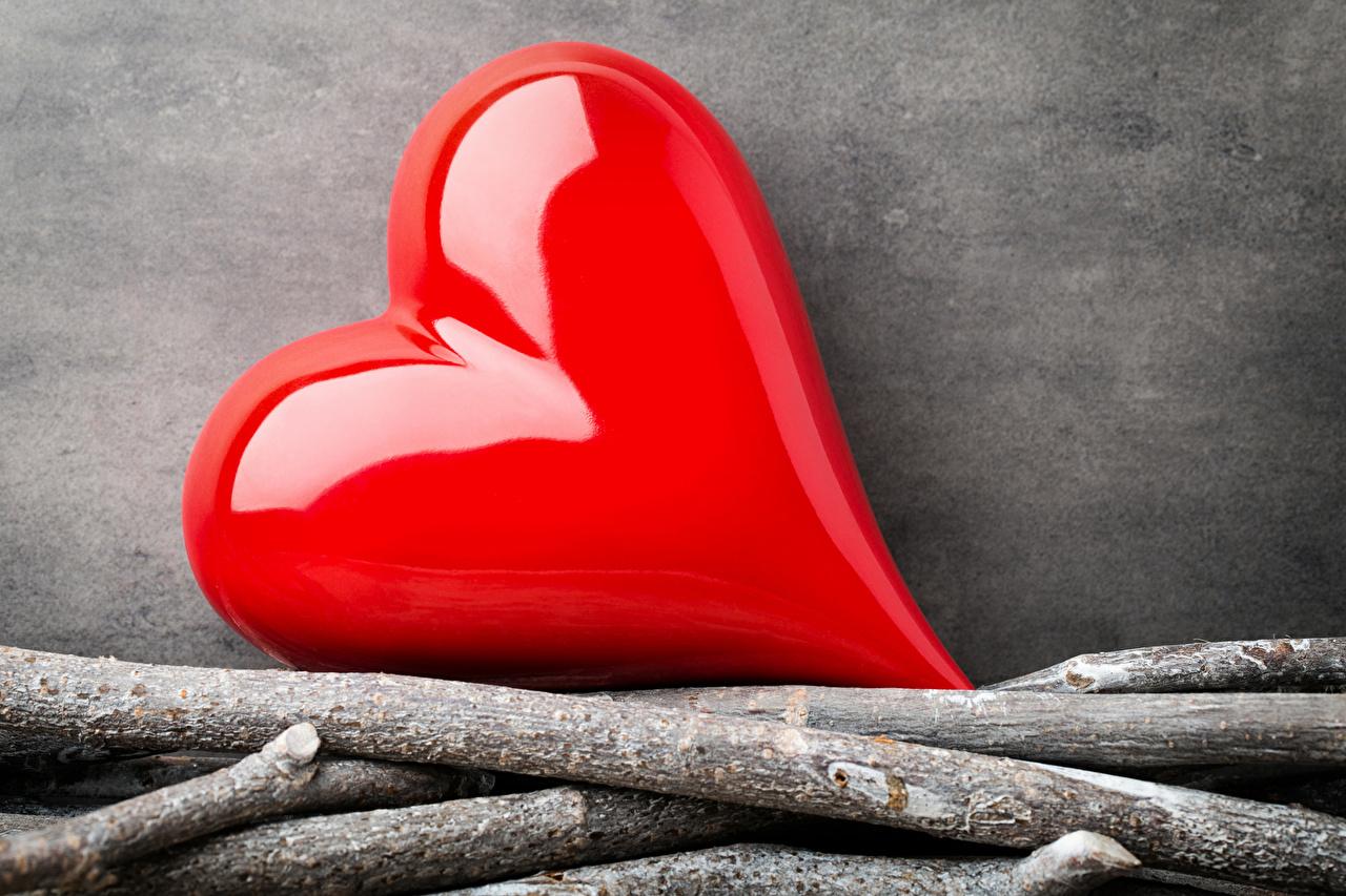 Картинки День святого Валентина серце красная ветка День всех влюблённых Сердце сердца сердечко красных красные Красный ветвь Ветки на ветке