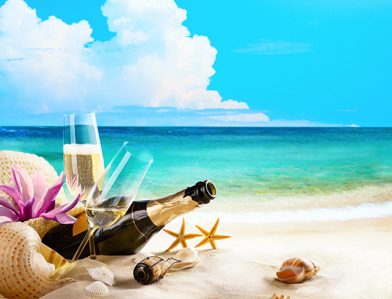 Фото Шампанское Ракушки Бокалы Бутылка Побережье Продукты питания Игристое вино Еда Пища берег