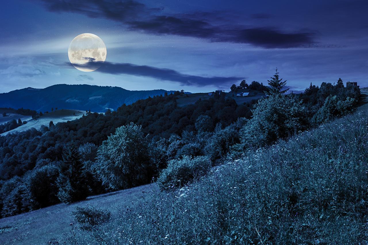 Обои для рабочего стола Горы Природа Небо Леса луны Ночь траве гора лес Луна луной ночью Трава в ночи Ночные