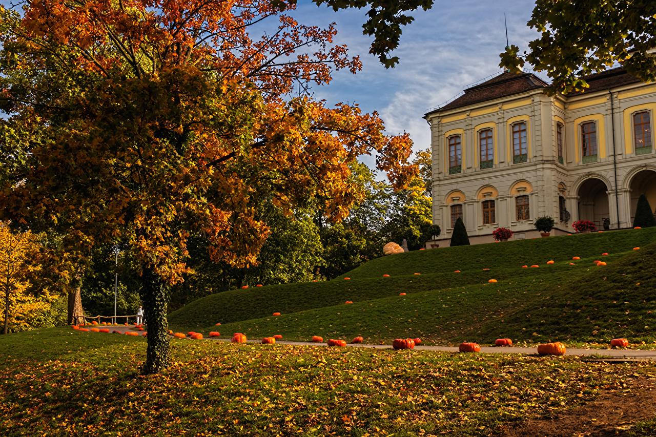 Картинки Листва Германия Ludwigsburg Тыква Природа осенние Парки Дома дерево лист Листья Осень парк Здания дерева Деревья деревьев