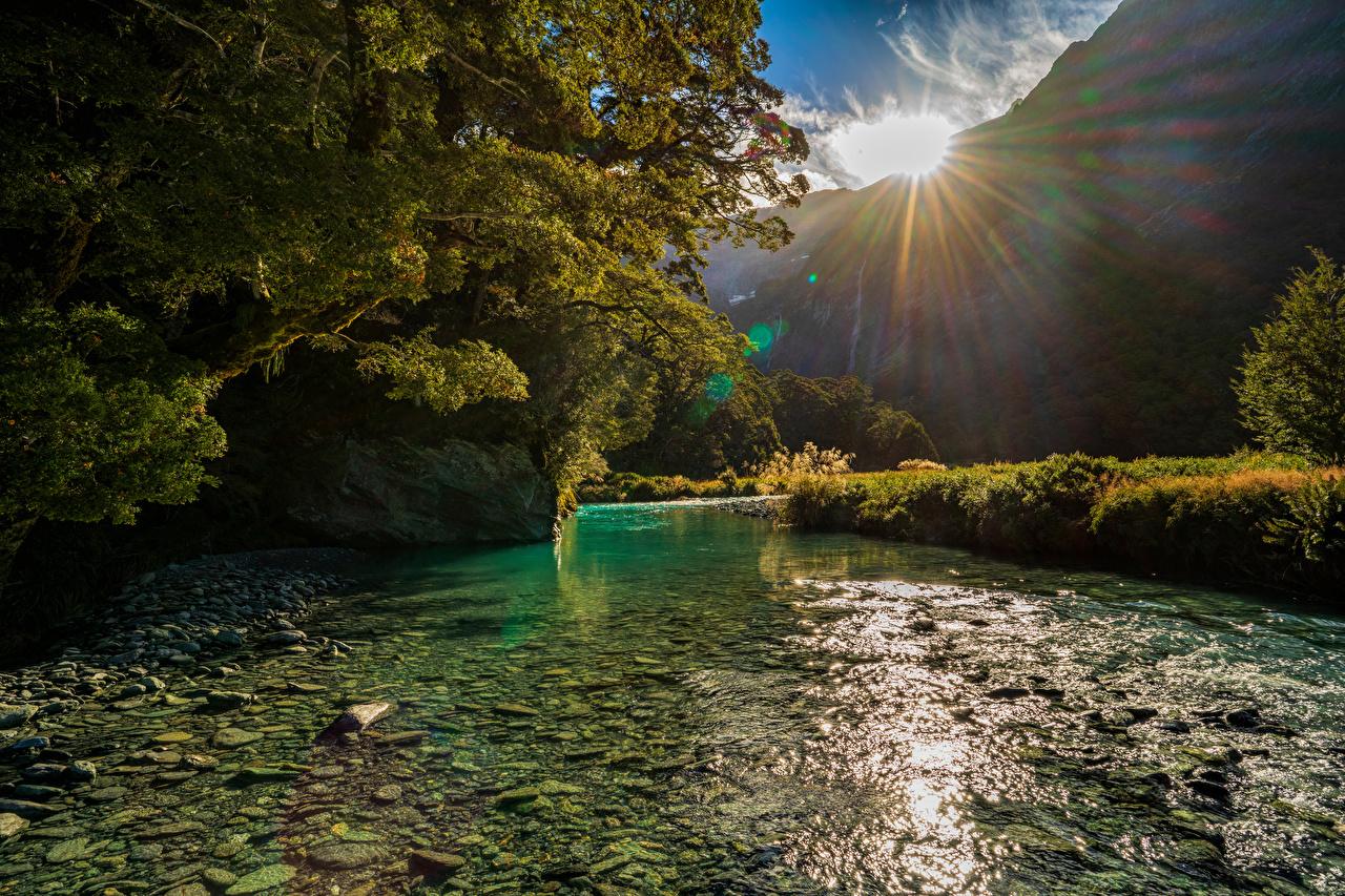Картинка Новая Зеландия Mount Aspiring National Park гора солнца Природа речка дерево Горы Солнце Реки река дерева Деревья деревьев