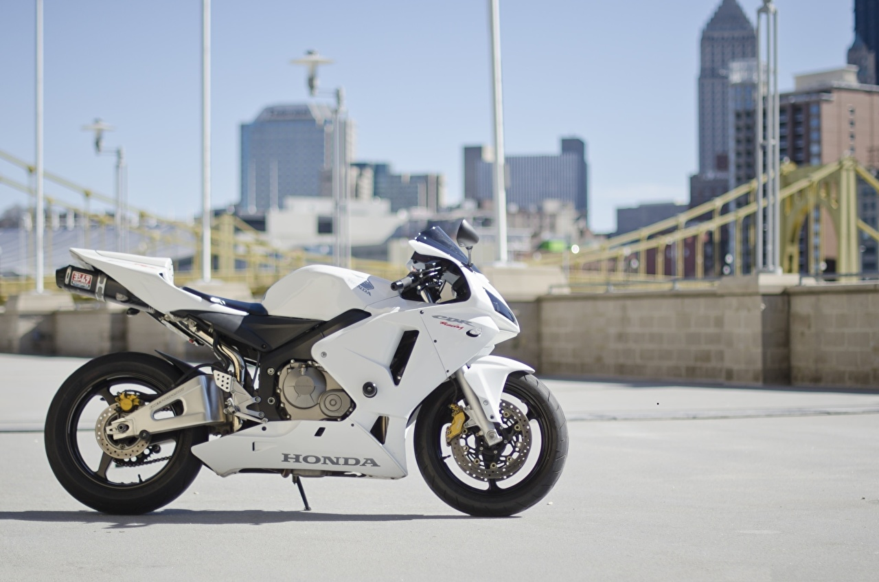 Фотографии Honda cbr600rr белые мотоцикл Хонда белая Белый белых Мотоциклы