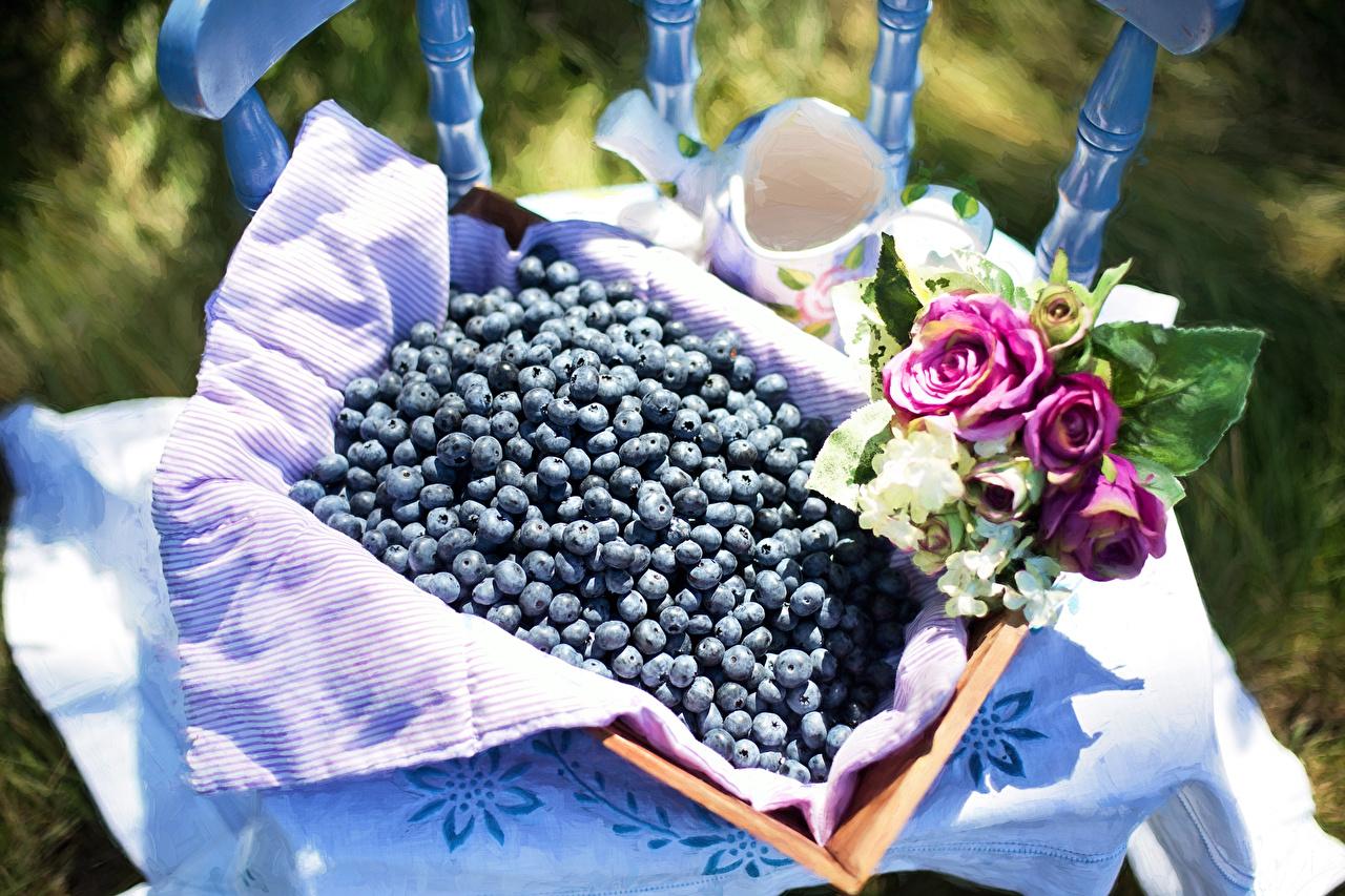 Фото Розы Черника Ягоды Продукты питания роза Еда Пища