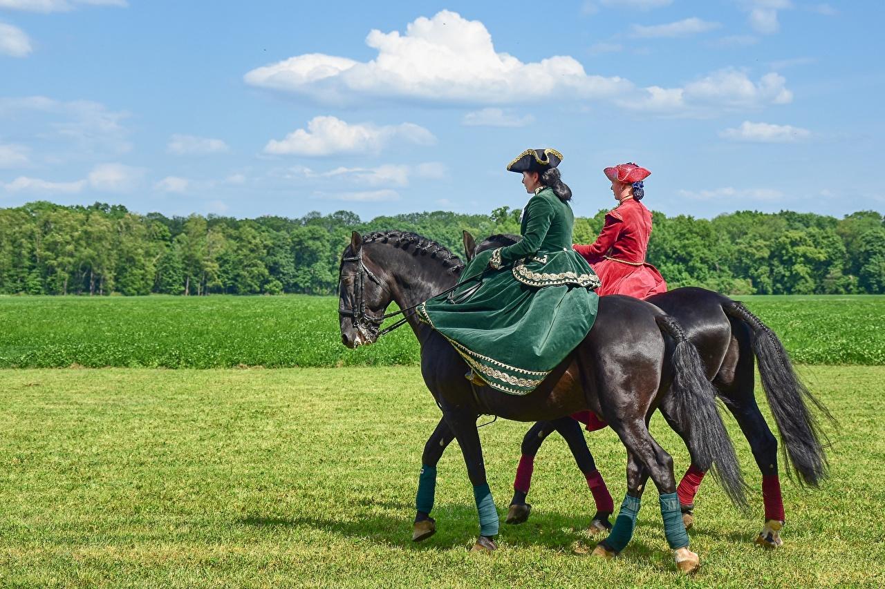 Картинка Лошади Шляпа Девушки Трава