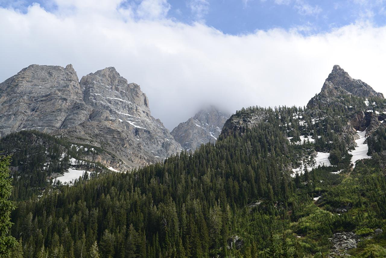 Фото Grand Teton National Park, Wyoming гора скале Осень Природа лес Снег Парки Пейзаж Горы Утес скалы Скала осенние Леса парк снеге снега снегу