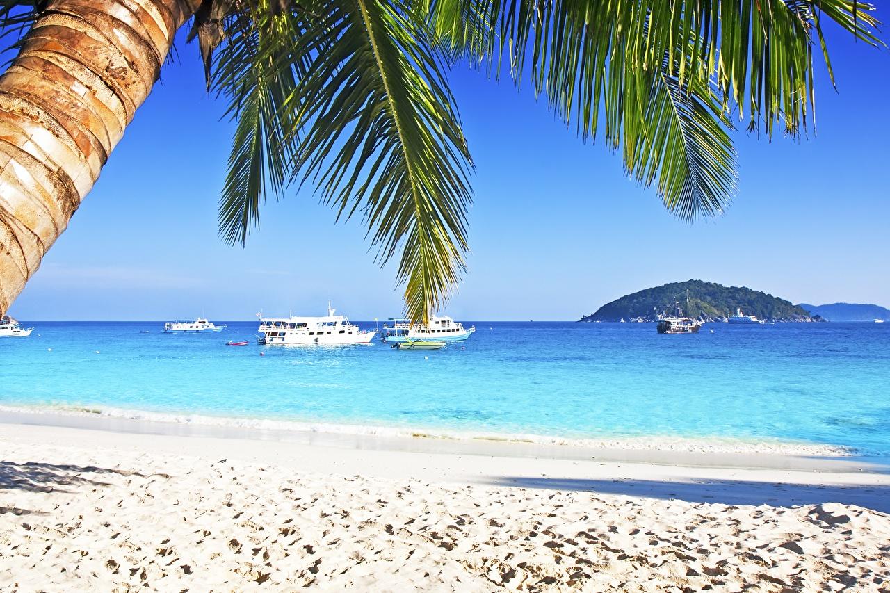 обои для рабочего стола море пляж пальмы