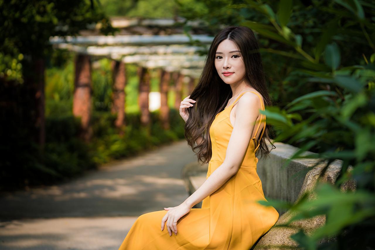 Фотография боке девушка азиатка рука Сидит смотрят Платье Размытый фон Девушки молодая женщина молодые женщины Азиаты азиатки Руки сидя сидящие Взгляд смотрит платья