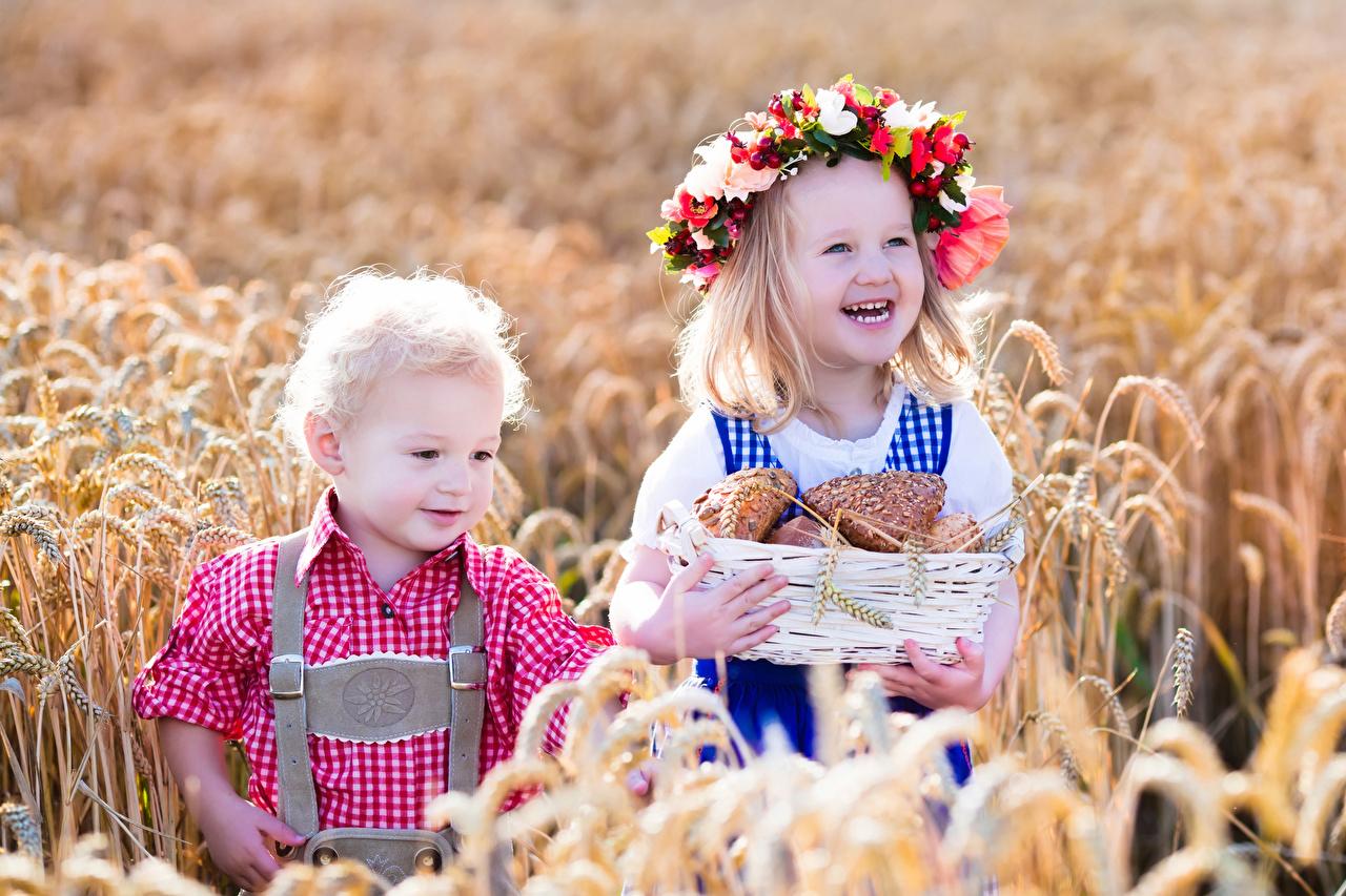 Фотографии Девочки Мальчики улыбается Дети две венком Пшеница Поля Корзина колосья Булочки девочка мальчик мальчишки мальчишка Улыбка ребёнок 2 два Двое Венок вдвоем Колос корзины колосок колоски Корзинка