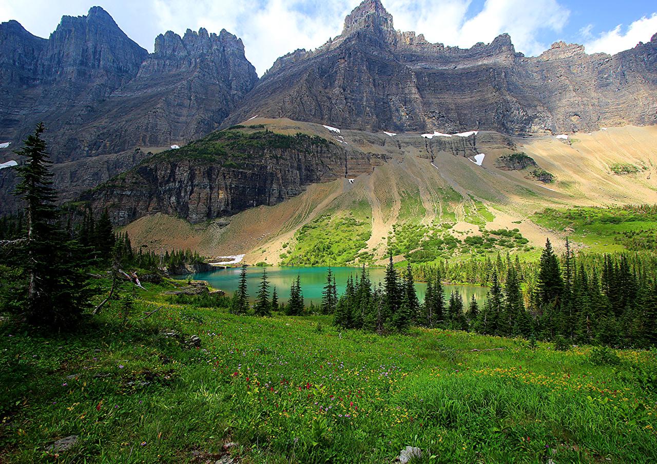 Обои для рабочего стола США Glacier National Park Ель гора Природа Парки Озеро Пейзаж траве штаты ели Горы парк Трава