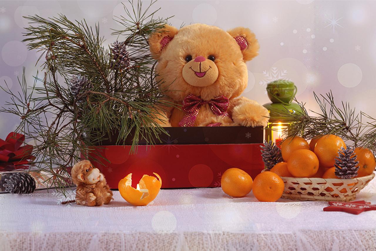 Картинки Мандарины Мишки Пища Шишки Плюшевый мишка Еда шишка Продукты питания
