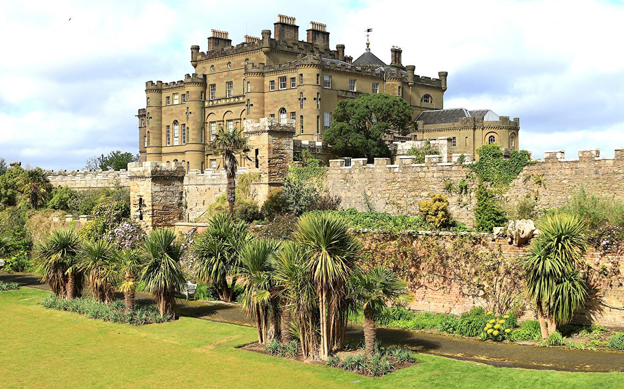 Обои Шотландия Culzean castle Замки Забор пальма Города пальм Пальмы забора ограда забором