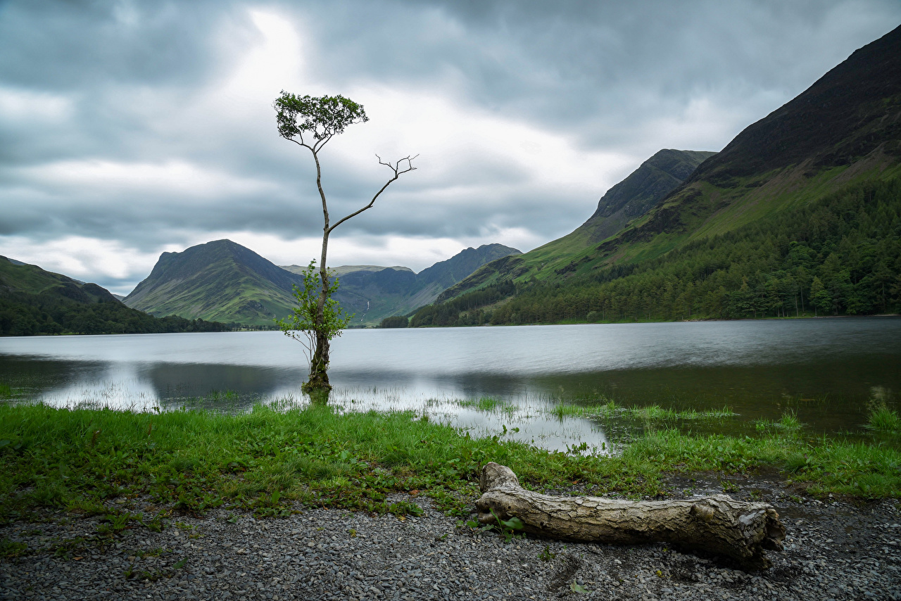 Картинка Англия Lake District, Cumbria Горы Природа парк Озеро дерево гора Парки дерева Деревья деревьев