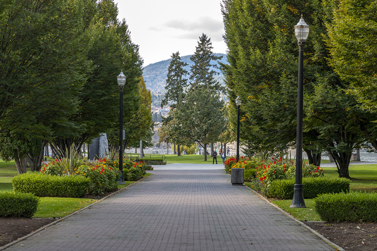 Картинка Канада Kelowna Природа парк Уличные фонари дерево кустов Парки Кусты дерева Деревья деревьев