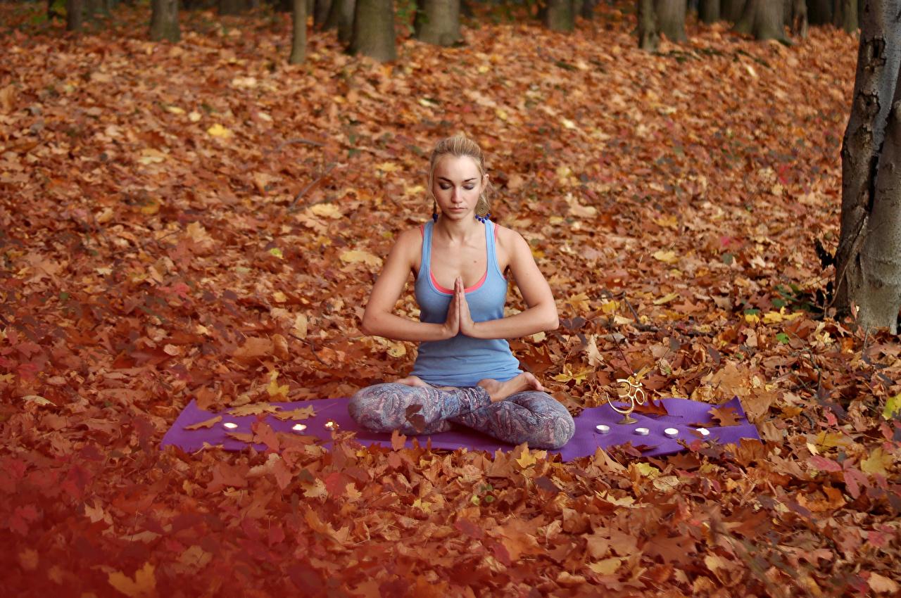 Фото Поза лотоса блондинки Йога Осень Девушки сидящие блондинок Блондинка осенние сидя Сидит