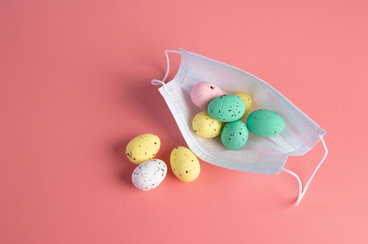 Картинка Пасха Коронавирус яйцо Пища Маски Розовый фон яиц Яйца яйцами Еда Продукты питания