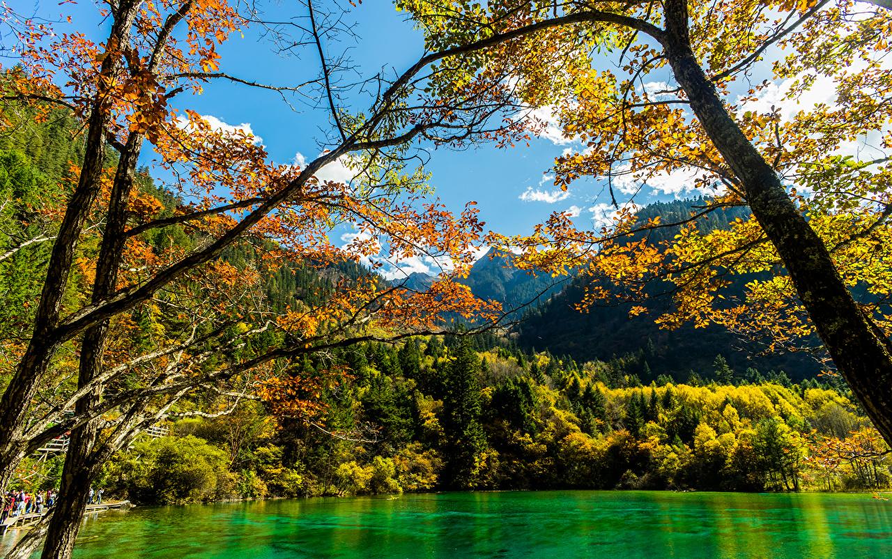 Фотография Цзючжайгоу парк Китай осенние Природа лес Парки Озеро Осень парк Леса