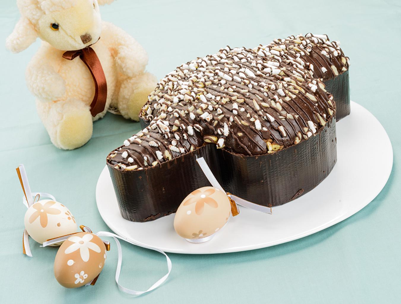 Фото Пасха яиц Шоколад Еда тарелке Выпечка Праздники яйцо Яйца яйцами Пища Тарелка Продукты питания