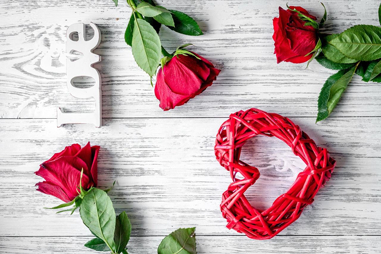 Фото Английский Сердце роза спортивный слова Шаблон поздравительной открытки английская инглийские серце сердца сердечко Розы Спорт спортивные спортивная текст Слово - Надпись