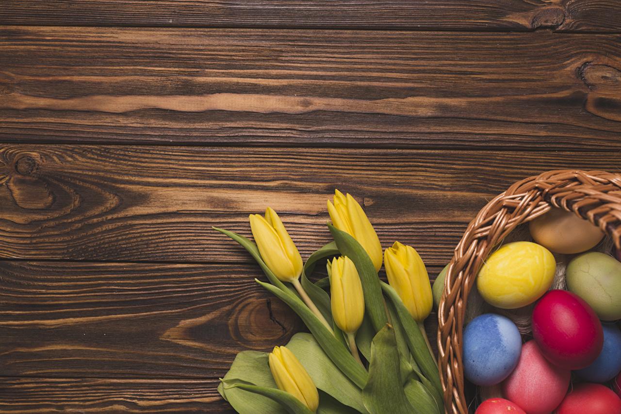 Картинка Пасха Разноцветные яйцо Желтый Тюльпаны Цветы Продукты питания Шаблон поздравительной открытки Доски яиц Яйца яйцами желтые желтая желтых тюльпан цветок Еда Пища