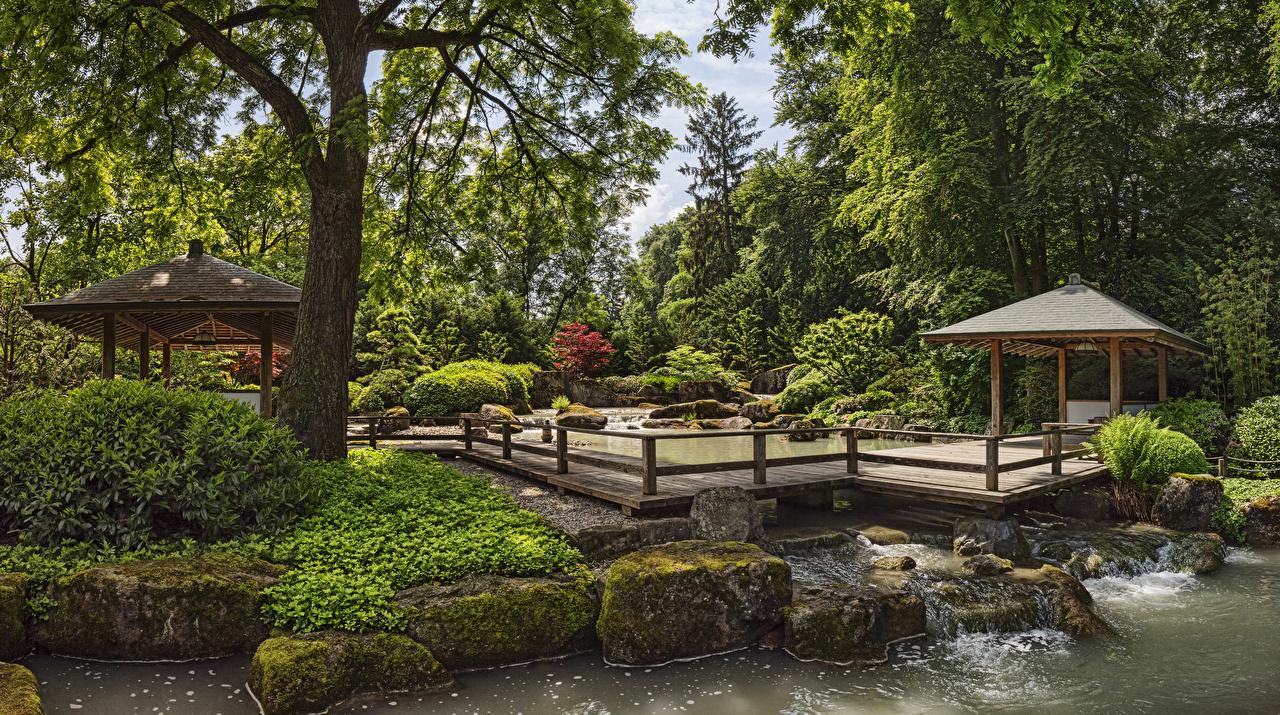 Фотография Германия Augsburg Botanical Garden Природа Сады Пруд Мох Камень Кусты дерево Дизайн мха мхом Камни кустов дерева Деревья деревьев дизайна