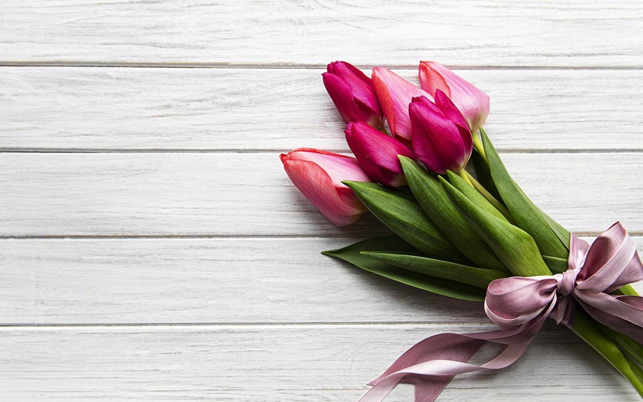 Фото Букеты Тюльпаны цветок Шаблон поздравительной открытки Доски букет тюльпан Цветы