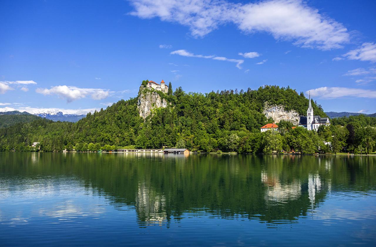 Фотография Словения Bled Замки скале Природа Леса Озеро Пирсы Утес замок Скала скалы лес Причалы Пристань