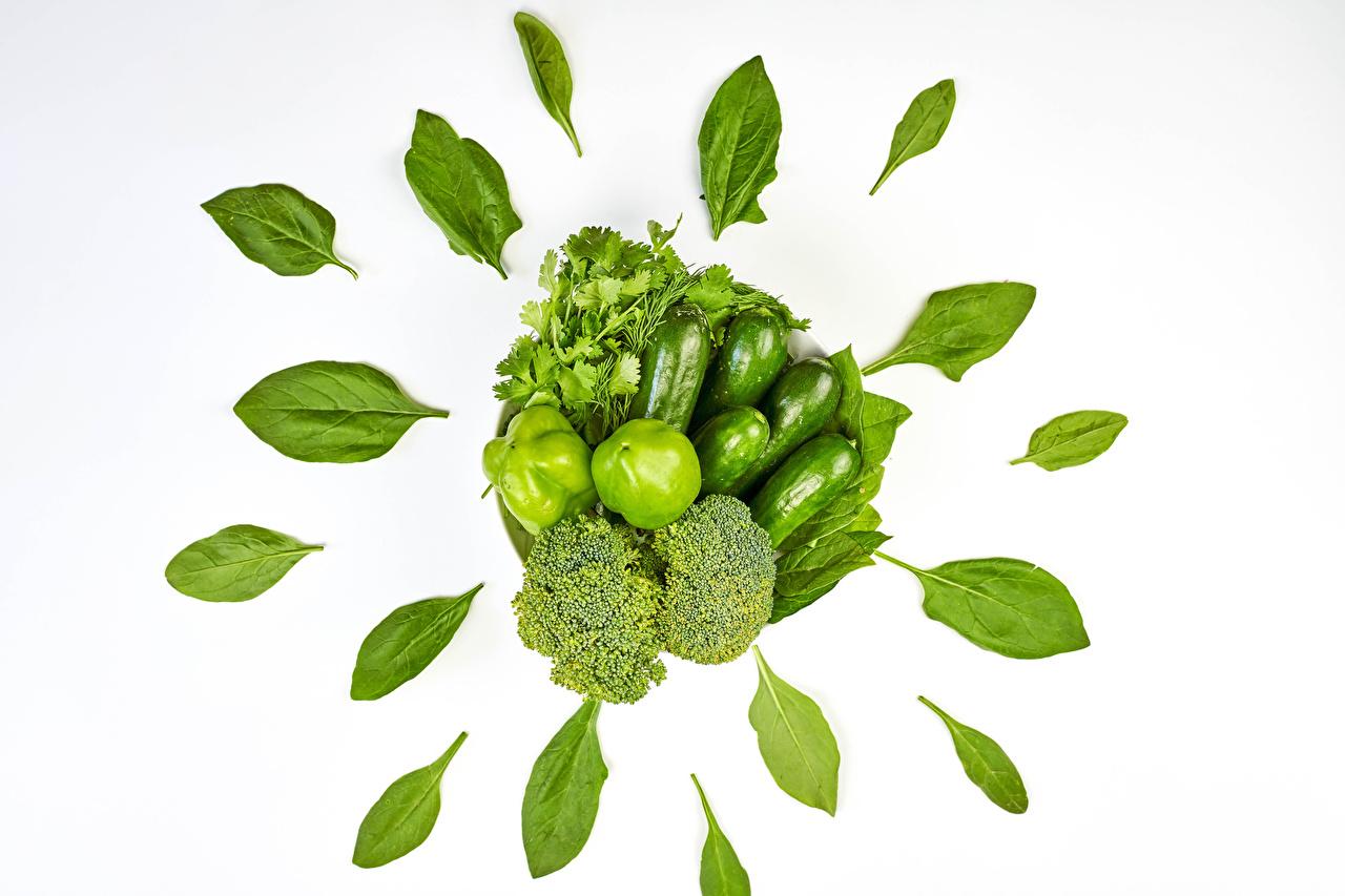 Фотография Листья parsley Огурцы Зеленый Брокколи Еда Овощи перец овощной Белый фон лист Листва зеленая зеленые зеленых Пища Перец Продукты питания белом фоне белым фоном