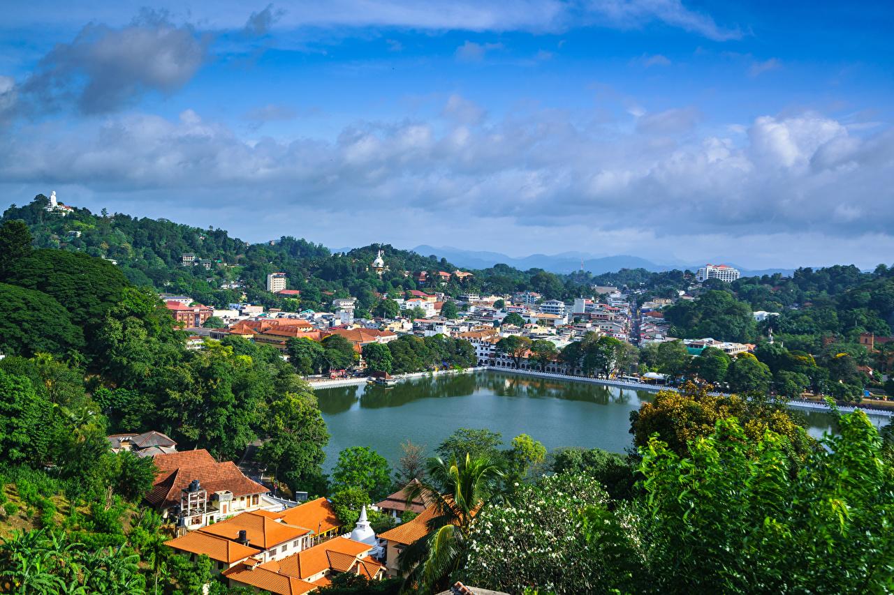Картинка Шри-Ланка Kandy Природа Дома дерево Здания дерева Деревья деревьев