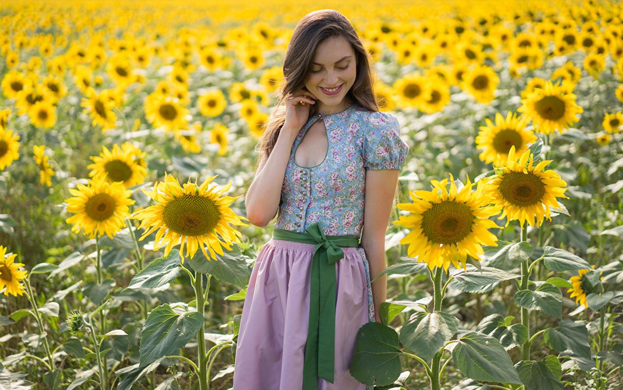Фотографии улыбается Laura Девушки Поля Цветы Подсолнечник Улыбка девушка молодая женщина молодые женщины цветок Подсолнухи