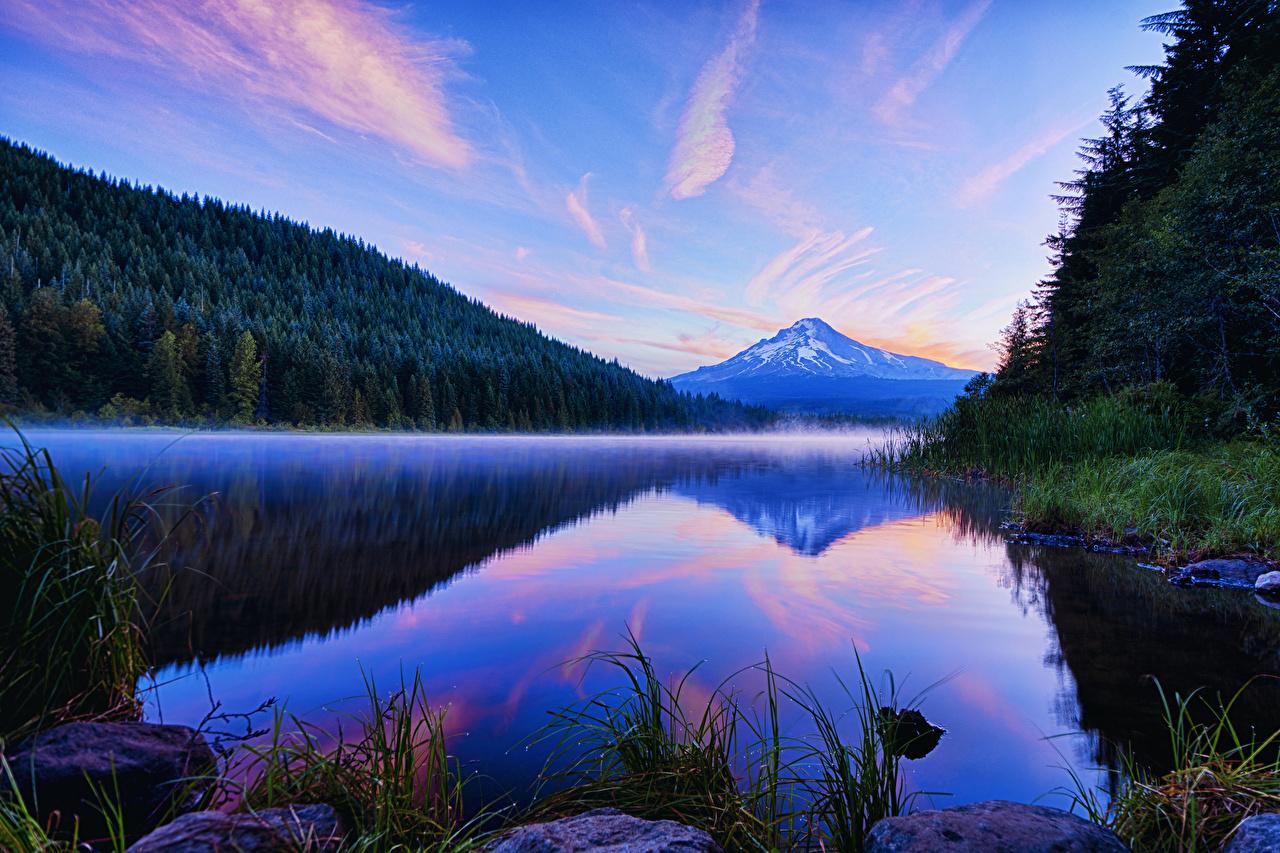 Фотографии США Trillium Lake Oregon Горы Природа Леса Озеро Вечер штаты америка гора лес