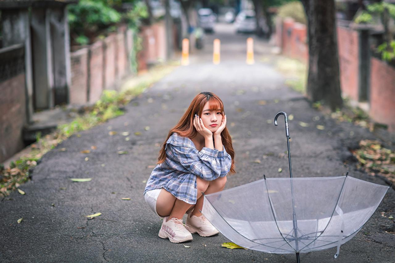 Картинки боке Девушки Азиаты зонтом сидящие Размытый фон девушка молодая женщина молодые женщины азиатки азиатка Зонт сидя Сидит зонтик